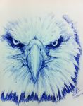 Quick Pen sketch of Eagle (abt 30 mins) by chaseroflight