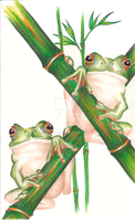 2 Frogs Hanging out by andys184