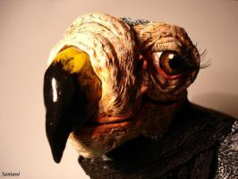 DoDo the eye by Santani