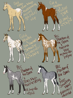 Foal Sale - Winners Announced! by SquirrelyTodd