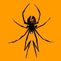 My Chemical Romance Spider by MCR85