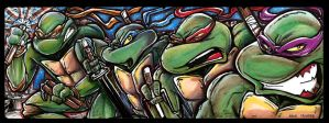 TMNT Color cards by mainasha