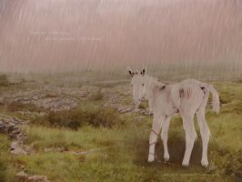 tell me you don't feel a thing by takeoffyourcolors