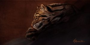 Clouded Leopard by Indu-Art