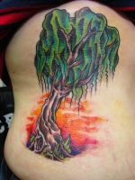 Willow Tree by BassZombie