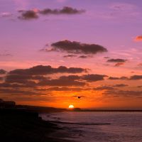 Brighton Sunrise by diado