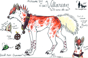 Villarean Ref Sheet by CrossHound213