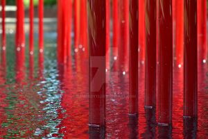 Red reeds in water by nanoboy13