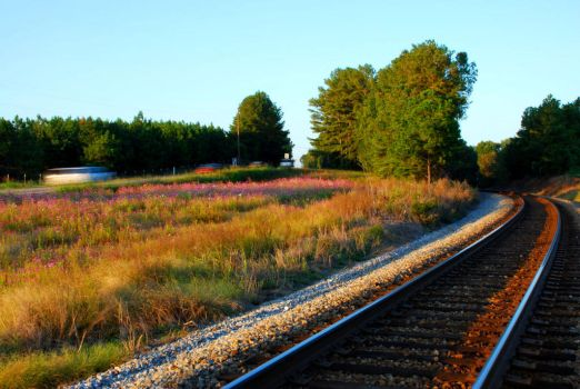Railside in Autumn by olorinthewhite