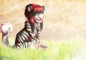 Tabery Tiger by Tabery