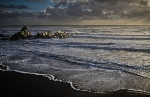 West Coast Beach, New Zealand by pwillyams