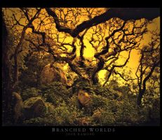 Branched Worlds by Inebriantia