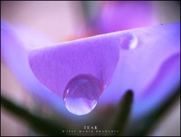 Tear by darkmatter257