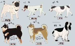 DogAdopts: 1 CLOSED by Pred-Adopts