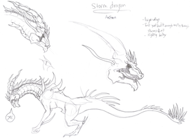 STORM DRAGON - Anitan Concept 1 by DelusionalPuffball
