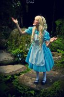 Alice in Bubble Land by melissa-andrade