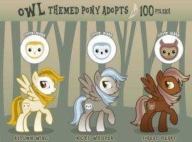 Owl Themed Pony Adoptables (CLOSED) by ShadowBirds