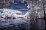 Merseburg II _  Flood 2013 - IR by EYELIGHTZONE