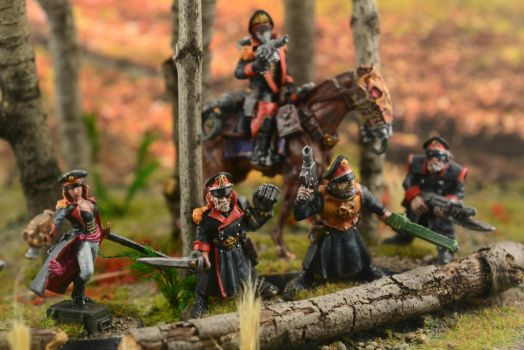 Imperial Guard Diorama 1 by GeneralCambronne