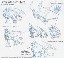 Gyryn Reference Sheet 2006 by Quaylak