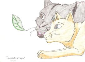 Chakotay and Willowpaw by Dragon-of-DC