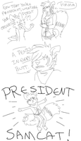This is Crap:: President Samcat. by KingNeroche