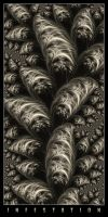 Infestation by rougeux