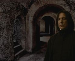 Snape in the Dungeons by rouquinamour