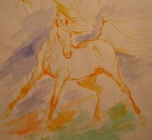 arabian horse sketch by toratora5