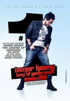 Tamer Hosny - Poster no.9 2011 by adriano-designs