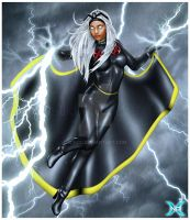 The Full Power of The STORM by 3DNDC