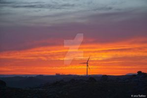 Wind turbines in sunset by Dinozzaver