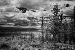 Yellowstone 2007 - Infrared by photecho