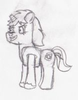 Teddy (another pony I technically just met) by macmcjones