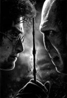 Harry Potter - The Finale by Stanbos