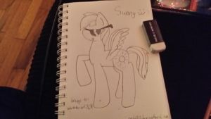 .:GIFT:. Sunny by cady213