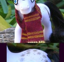 Harry Potter Pony by jupiternwndrlnd