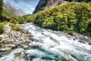 New Zealand HDR by dantordjman