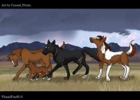 herd...err pack by abosz007