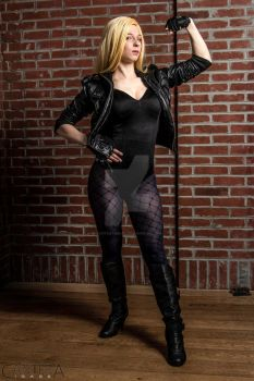 black canary 4 by CanteraImage
