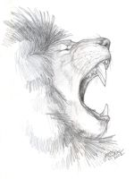 African Lion Sketch by Emryswolf