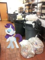 Rarity Hates Trash by EMedina13