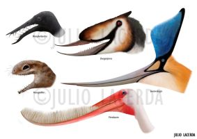 Pterosaur Menagerie by Julio-Lacerda