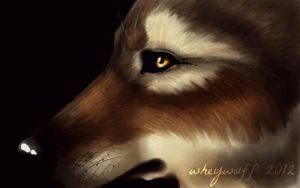 Wolf speedpaint by Edeneue
