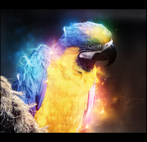 Color Parrot by BEAS1