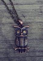Bronze Owl Necklace by MythicalFolk