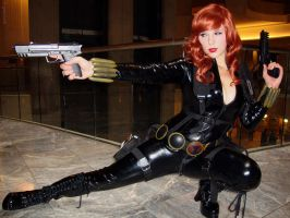 Deadly Black Widow by greyloch-md