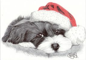 Christmas Dog by Cindy-R