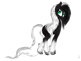 Fancy black pony by V-D-K