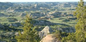Hell Creek Formation TRNP by LEXLOTHOR